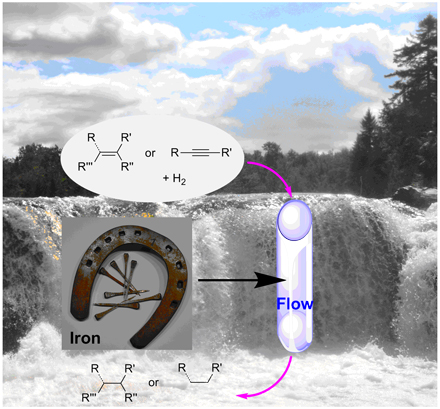 Iron nanoparticles in a polymer matrix act as hydrogenation catalysts in a flow system using nearly pure water. / Photo: Audrey Moores/McGill University