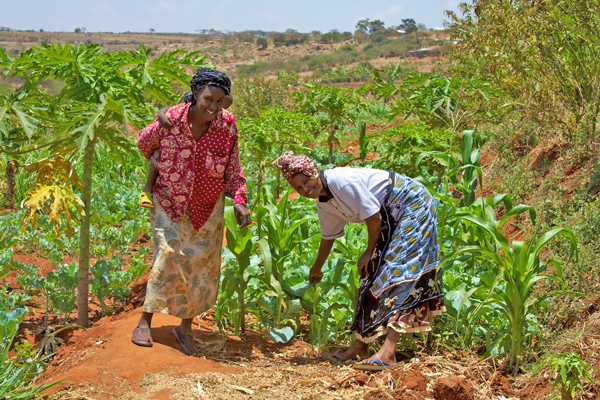 Women smallholder farmers in Kenya. Photo: Wikimedia Commons (McKay Savage from London, UK)
