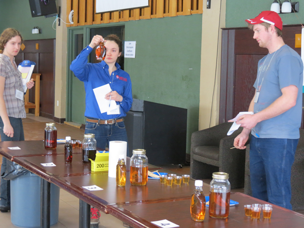 The best part of maple syrup judging? The taste test. / Photo: Caroline Begg