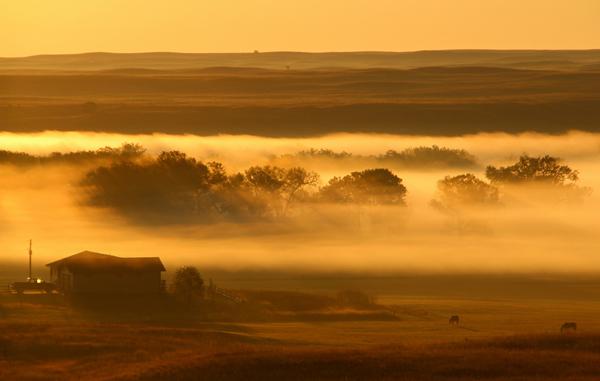 Nebraska-morning_Rowan-Barrett