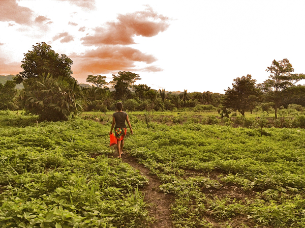 A young Emberá woman walks to the communal coffee plantation. / Photo: Divya Sharma