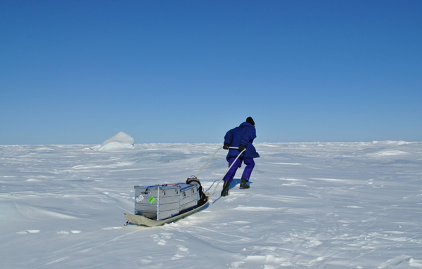 McGill professor Bruno Tremblay pulling a sled containing equipment to measure Arctic sea ice.