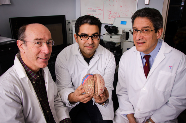 From left to right: Dr. Robert Hess, Dr. Reza Farivar and Dr.  Salvatore Carbonetto. The new team of neuroscientists will occupy the research floors in the Livingston building of the MGH.