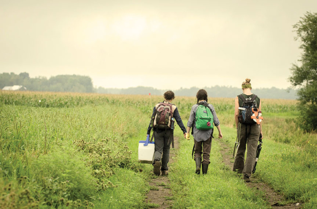 Graduate student Carly Ziter and undergraduate students Claudia Atomei and Katriina O'Kane walk to a field site to measure carbon storage and biodiversity. / Photo: Alex Tran
