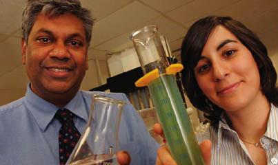 Le doyen Chandra Madramootoo, directeur fondateur du Centre Brace de gestion des ressources en eau, avec la professeure de génie chimique affiliée au Centre Nathalie Tufenkji