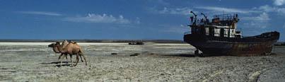 Chameaux aux abords d'une épave gisant sur ce qui était auparavant le fond de la mer d'Aral, dont les pratiques de gestion de l'eau désastreuses ont eu raison.