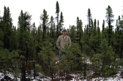 Murray Humphries near Raindeer Lake, Manitoba, in the sparse northern forests that beaver and other animals are now calling home