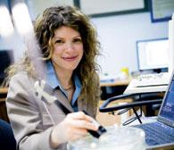 Tal Arbel utilise une sonde d'échographie sur un cerveau artificiel pour tester les algorithmes élaborés dans le laboratoire d'imagerie médicale.
