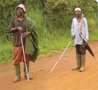 Drug Resistance Complicates River Blindness Fight