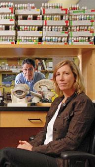 La quête visant à percer le mystère de la régénération tissulaire et neuronale a donné lieu à une étroite collaboration interdisciplinaire entre les neuroscientifiques Sal Carbonetto et Kathleen Cullen.