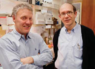 Professors Michael Meaney and Moshe Szyf have found genes can be turned on and off