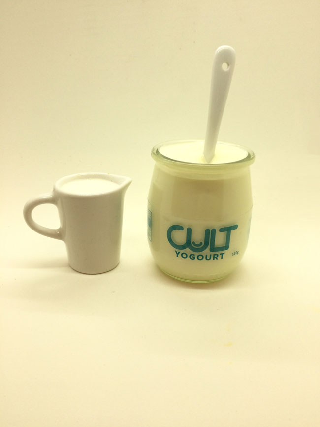 Le succès du yogourt Cult est tel que ses créateurs, qui ont remporté une deuxième place à la Coupe Dobson l'an dernier, veulent le rendre disponible dans 75 points de vente à Montréal d'ici la fin de l'année.