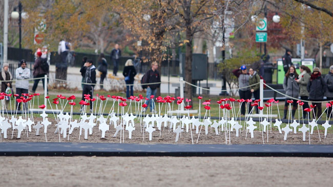 The paper poppies and crosses planted by local high school students to pay tribute to fallen Canadian soldiers. / Photo: Neale McDevitt