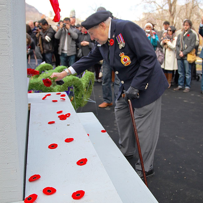 A veteran pays his respects to the men and women who died while serving Canada. / Photo: Neale McDevitt