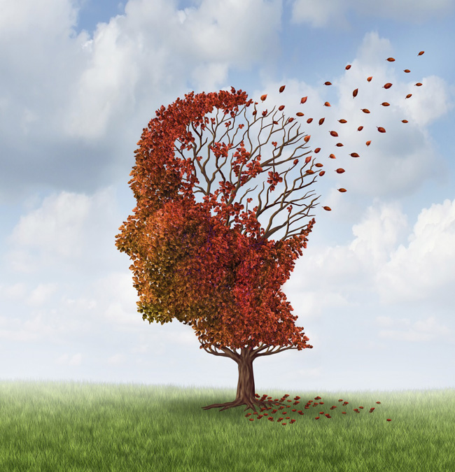 According to the World Health Organization, Alzheimer's disease is the most common cause of dementia, affecting more than 30 million people worldwide in 2015.