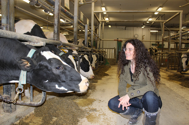 Elsa Vasseur, McGill's newly appointed Industrial Research Chair in Sustainable Life of Cattle, says a happy cow is a productive cow. / Photo: By Kathryn Jezer-Morton