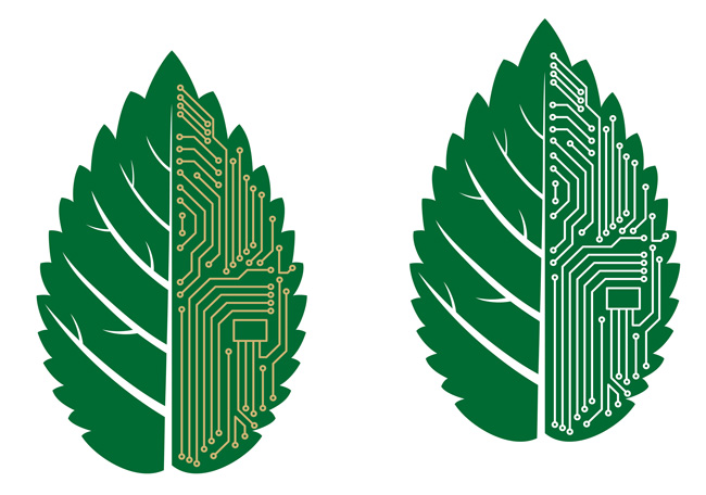 Green-technology-computer.web