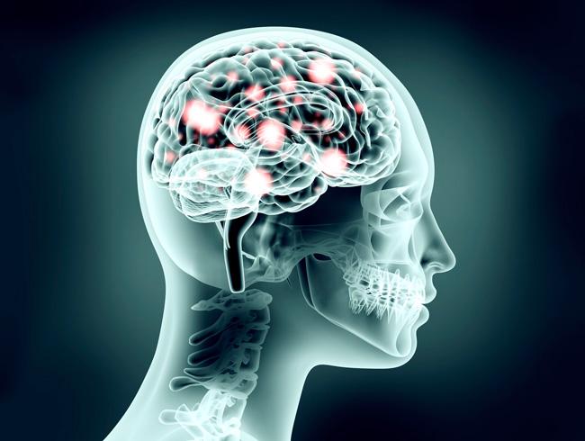 Brain-neuron.flip