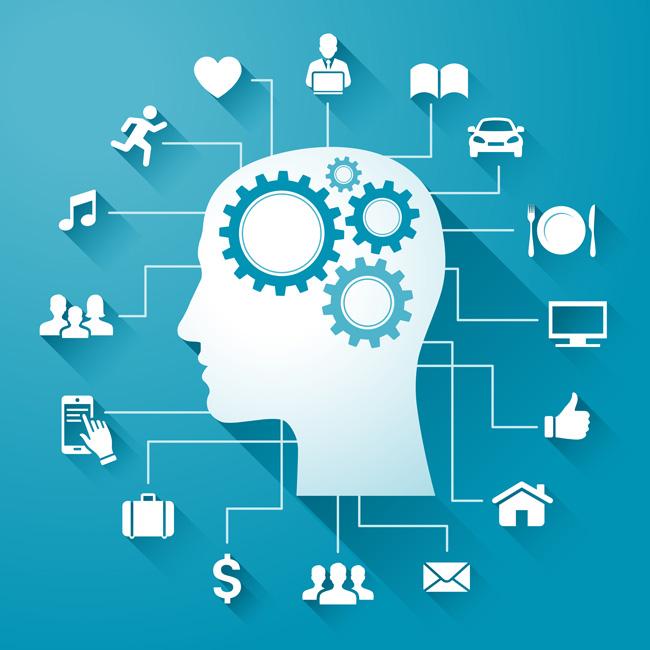 brain-facets-web