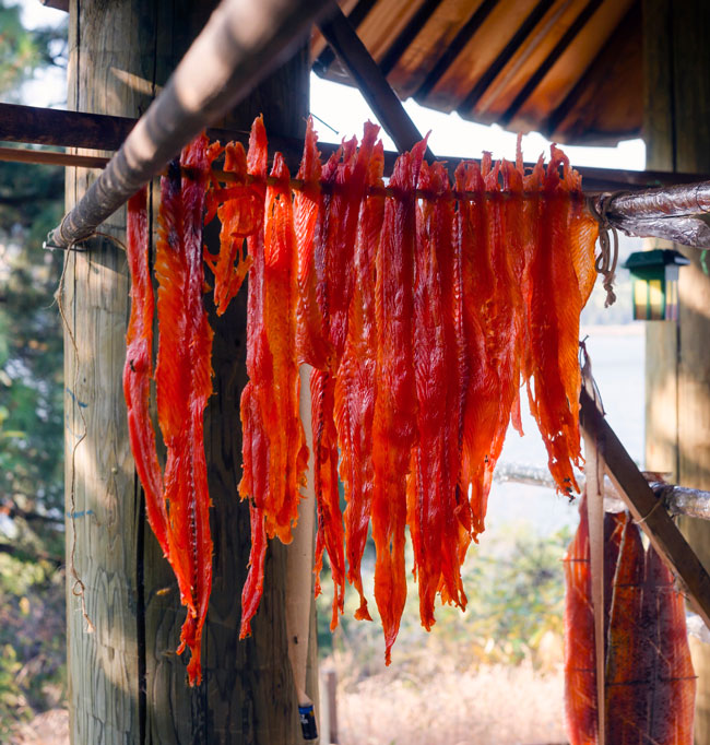 King salmon fish meat drying.